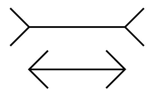Müller-Lyer-Illusion