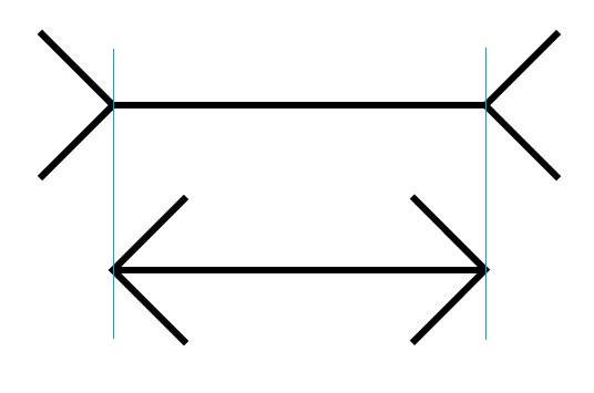Müller-Lyer-Illusion2