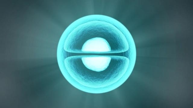 molecule-2082634