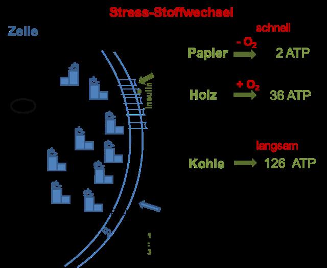 Abbildung1-Energiegewinnung